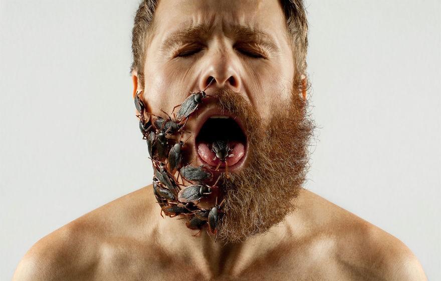 Les hommes à barbe porteraient plus de bactéries… que les chiens