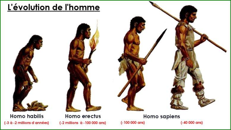 évolution-homme-fourrure-piloupilou